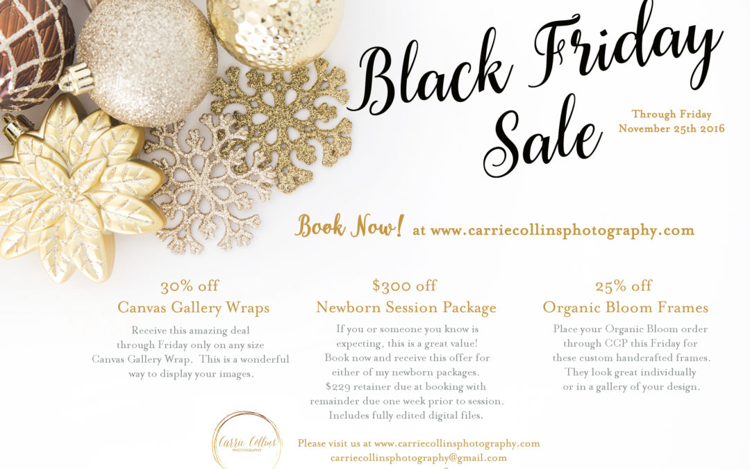 Bethesda Newborn Photographer | Carrie Collins Photography | Black Friday Sale 2016