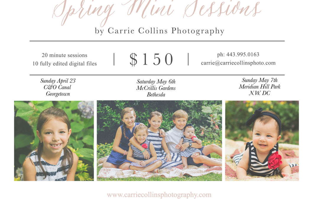 Spring Mini Sessions Open for Booking!| Bethesda Family Photographer
